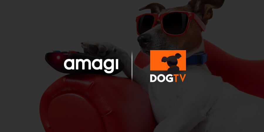 DOGTV Moves Its Broadcast Kennel To Amagi Cloud Platform