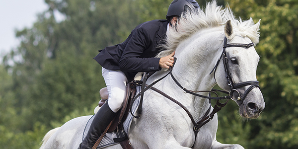 Horse & Country TV Goes Global With Cloud-Based Channel Playout Platform From Amagi